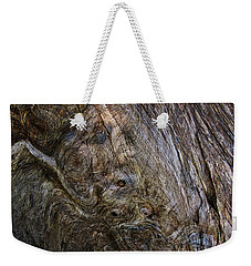 Weekender Tote Bag featuring the photograph Tree Memories # 19 by Ed Hall