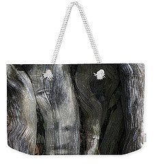 Weekender Tote Bag featuring the photograph Tree Memories # 20 by Ed Hall