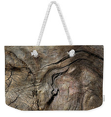 Weekender Tote Bag featuring the photograph Tree Memories # 23 by Ed Hall