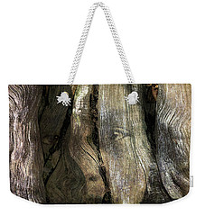 Weekender Tote Bag featuring the photograph Tree Memories # 24 by Ed Hall