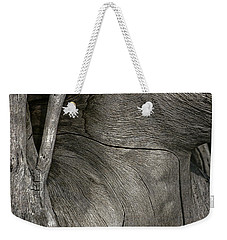 Weekender Tote Bag featuring the photograph Tree Memories # 26 by Ed Hall