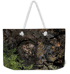 Weekender Tote Bag featuring the photograph Tree Memories # 27 by Ed Hall