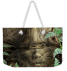 Weekender Tote Bag featuring the photograph Tree Memories # 32 by Ed Hall