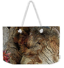 Weekender Tote Bag featuring the photograph Tree Memories # 34 by Ed Hall