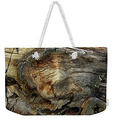 Weekender Tote Bag featuring the photograph Tree Memories # 36 by Ed Hall