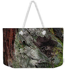 Weekender Tote Bag featuring the photograph Tree Memories # 38 by Ed Hall