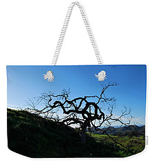 Weekender Tote Bag featuring the photograph Tree Of Light - Landscape by Matt Harang