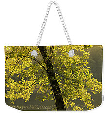 Weekender Tote Bag featuring the photograph Tree Of Light by Shane Holsclaw