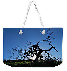 Weekender Tote Bag featuring the photograph Tree Of Light - Straight View 2 by Matt Harang