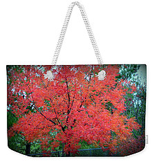 Weekender Tote Bag featuring the photograph Tree On Fire by AJ Schibig