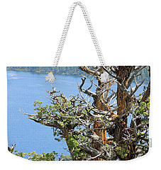 Weekender Tote Bag featuring the photograph Tree Over Emerald Cove by Lynda Lehmann