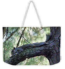Weekender Tote Bag featuring the photograph  Tree Squirrel by B Wayne Mullins