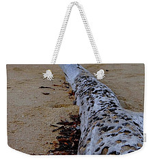 Tree Trunk And Shell On The Beach Full Size Weekender Tote Bag by Exploramum Exploramum