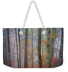 Weekender Tote Bag featuring the photograph Tree Trunks In Fog by Elena Elisseeva