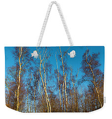 Trees And Blue Sky Weekender Tote Bag