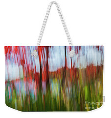 Weekender Tote Bag featuring the photograph Trees And Lake by Elena Elisseeva