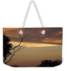 Trees Of The Lake Weekender Tote Bag