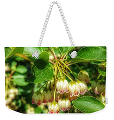 Tres Belle Weekender Tote Bag by Isabella F Abbie Shores FRSA