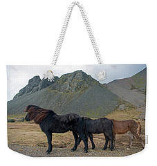 Tri - Color Icelandic Horses Weekender Tote Bag by Dubi Roman
