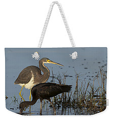 Tri-colored Heron And Glossy Ibis Weekender Tote Bag