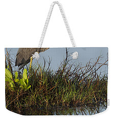 Tri-colored Heron And Reflection Weekender Tote Bag