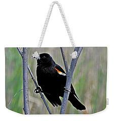 Tricolored Blackbird Weekender Tote Bag
