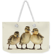 Triple Ducklings Weekender Tote Bag