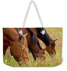 Triple Mustang Treat Weekender Tote Bag