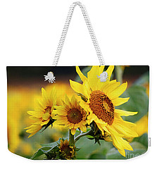 Triple Sun Beauties Weekender Tote Bag