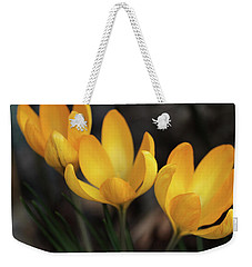 Weekender Tote Bag featuring the photograph Triplets by Connie Handscomb