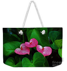 Triplets In Pink Weekender Tote Bag by Craig Wood