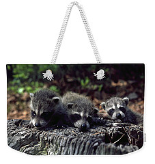 Weekender Tote Bag featuring the photograph Triplets by Sally Weigand