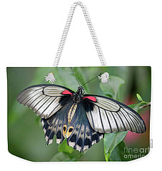Tropical Butterfly Weekender Tote Bag