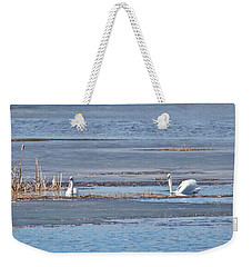 Weekender Tote Bag featuring the photograph Trumpeter Swans 0933 by Michael Peychich