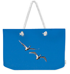 Weekender Tote Bag featuring the photograph Trumpeter Swans 1735 by Michael Peychich
