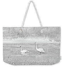 Weekender Tote Bag featuring the photograph Trumpeter Swan's Winter Rest Gray by Jennie Marie Schell