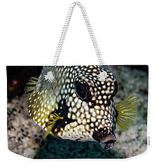 Weekender Tote Bag featuring the photograph Trunkfish Portrait by Jean Noren