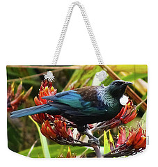 Weekender Tote Bag featuring the photograph Tui In Flax by Angela DeFrias