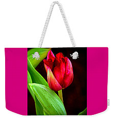 Tulip Caught In The Light Weekender Tote Bag