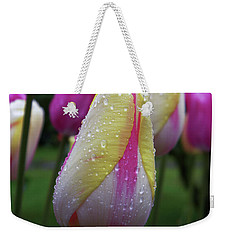 Tulip Close-up 2 Weekender Tote Bag