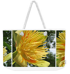 Weekender Tote Bag featuring the photograph Tulip Tree Flowers by Tina M Wenger
