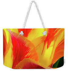 Weekender Tote Bag featuring the photograph Tulip In Bloom by D Davila