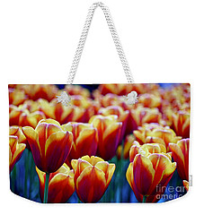 Tulips At Sunset Weekender Tote Bag by Michael Cinnamond