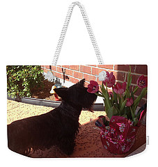 Weekender Tote Bag featuring the photograph Tulips by Diane Ferguson