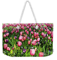 Weekender Tote Bag featuring the photograph Tulips In Bloom by D Davila