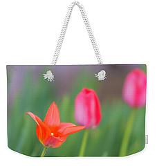 Tulips In My Garden Weekender Tote Bag by Rainer Kersten