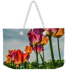 Tulips In The Spring Weekender Tote Bag