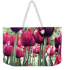 Weekender Tote Bag featuring the photograph Tulips by Melinda Blackman
