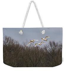 Tundra Swan Trio Weekender Tote Bag