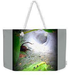 Tunnel Web  Weekender Tote Bag by Christy Ricafrente